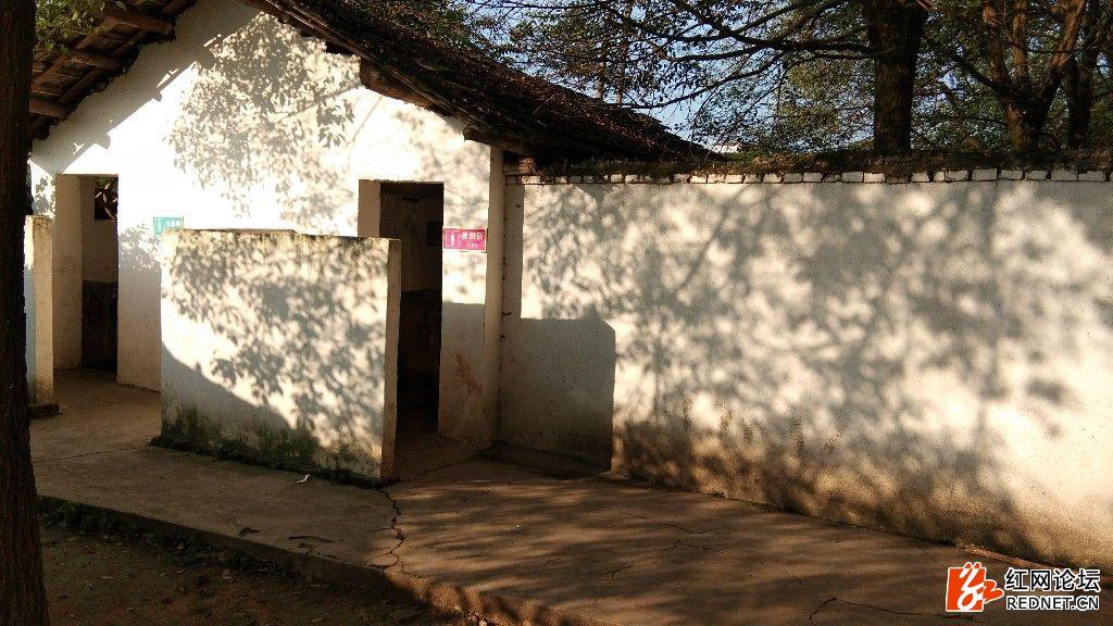 这是与教室相距几米远的旱厕