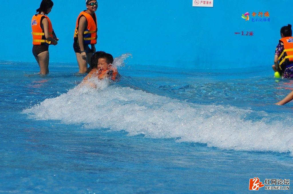 盛夏泳池 (4).jpg