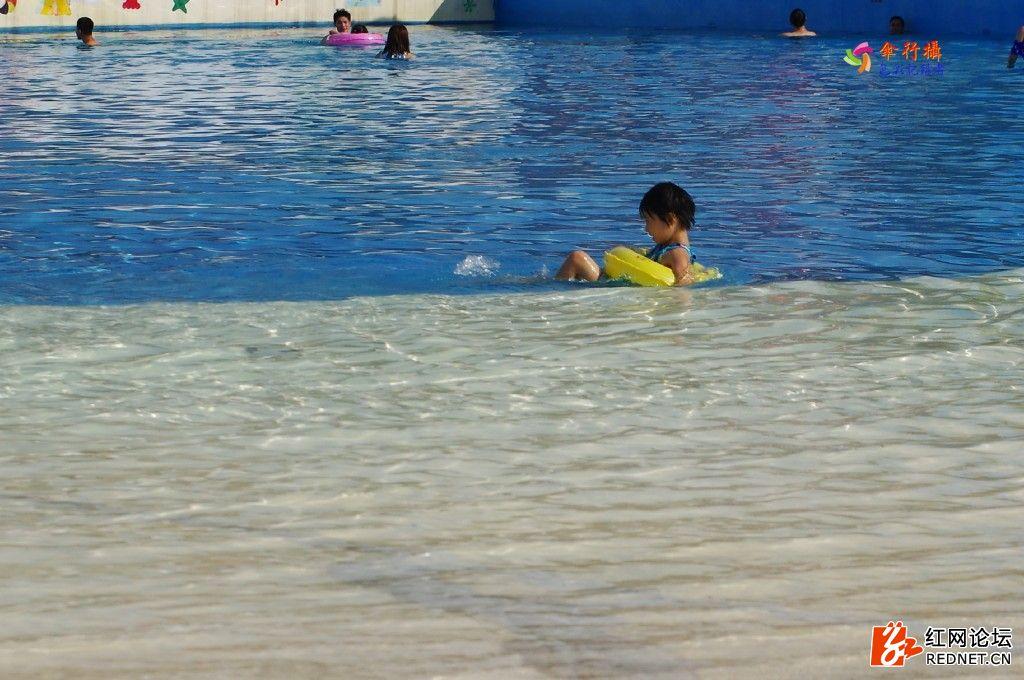 盛夏泳池 (80).jpg