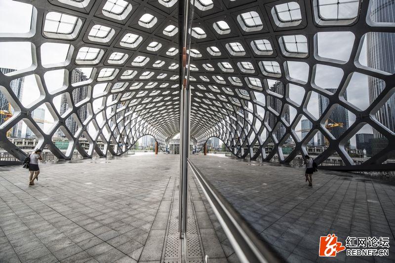 nEO_IMG_深圳湾体育馆 (2).jpg
