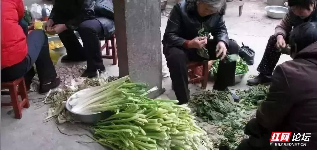 农村摆宴席,摘菜.jpg