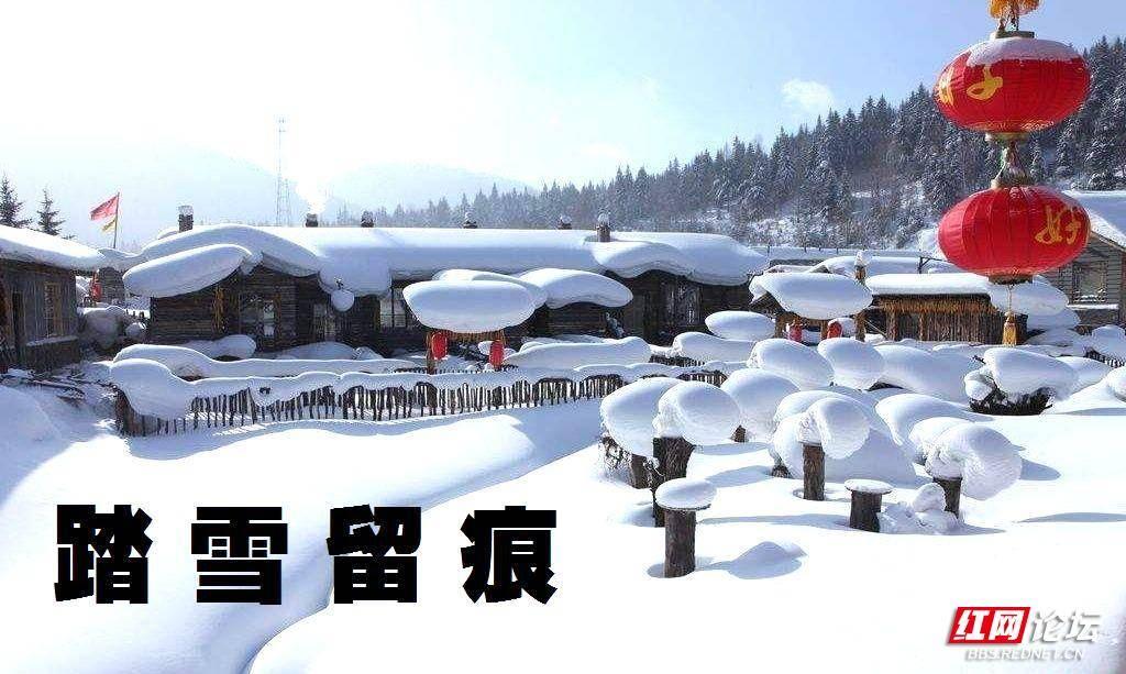03-8 踏雪留痕 .jpg