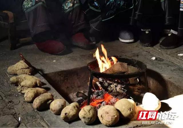 烤火神器10烤红薯.jpg