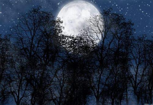 明月上青山.jpg